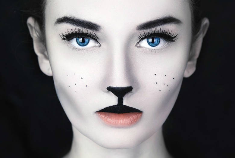 chat femme visage maquillage poils moustache taches de rousseur pxhere 100 f minin. Black Bedroom Furniture Sets. Home Design Ideas