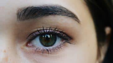 sourcils noirs yeux morphologie visage forme