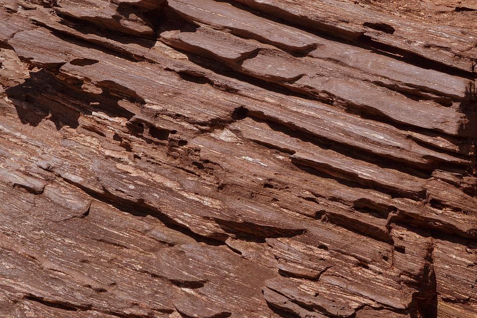 protections hygiéniques anciennes culotte écorce arbre