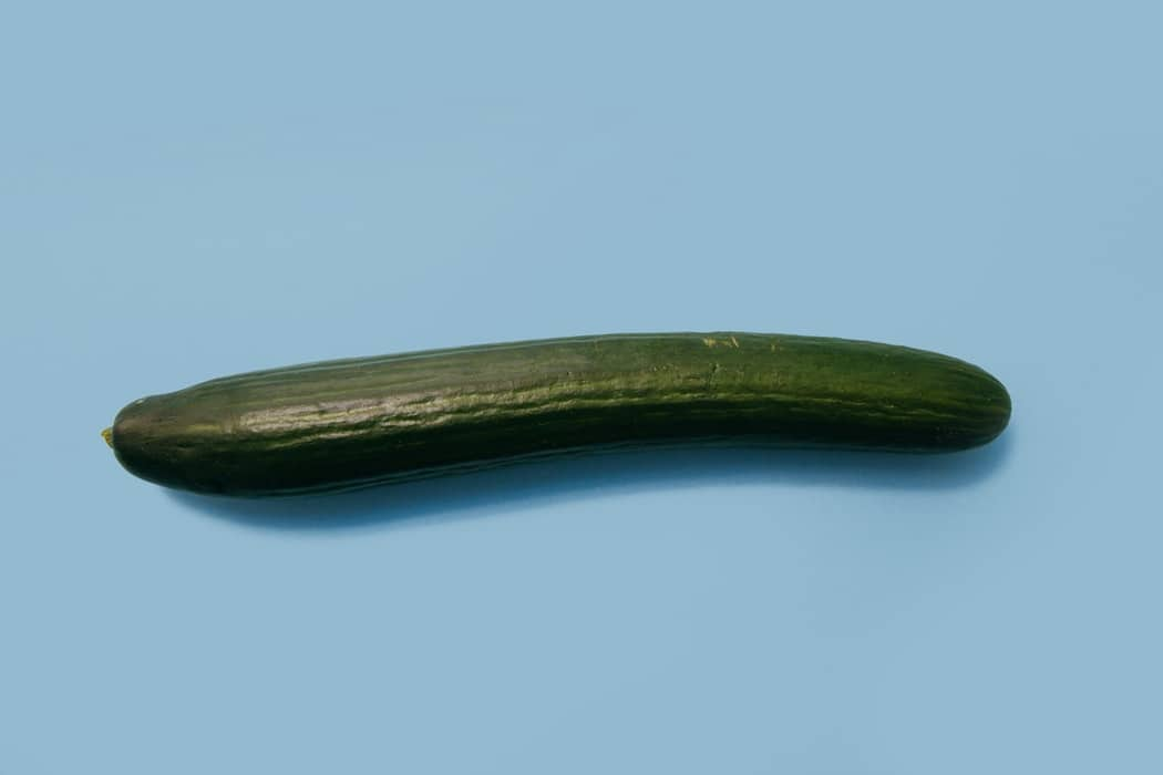 concombre légume vert outil de masturbation se masturber astuces