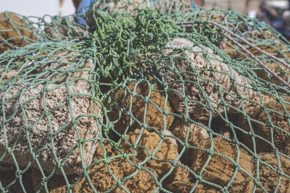 protections hygiéniques anciennes culotte éponge de mer