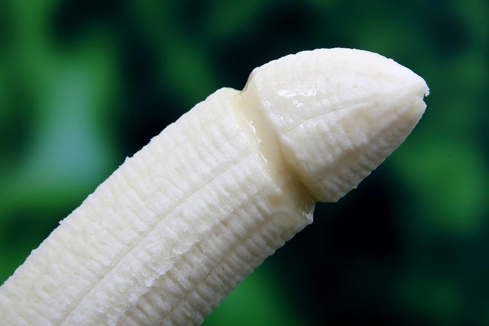 circoncision pénis