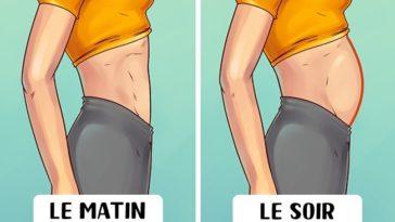 différents types de ventre
