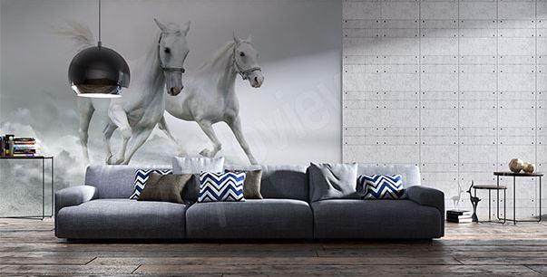 pourquoi est il mal vu pour une femme d 39 avoir des poils 4 fausses id es sur la pilosit 100. Black Bedroom Furniture Sets. Home Design Ideas