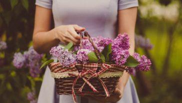ces fleurs à ne pas offrir en cadeau à ses proches femme panier