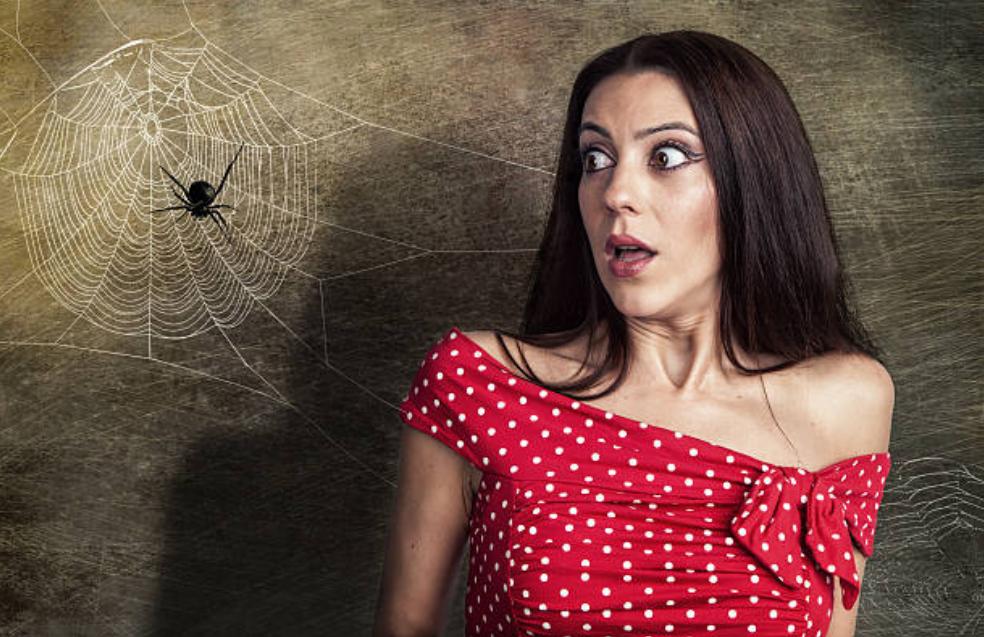 phobies des araignées peur toile araignée