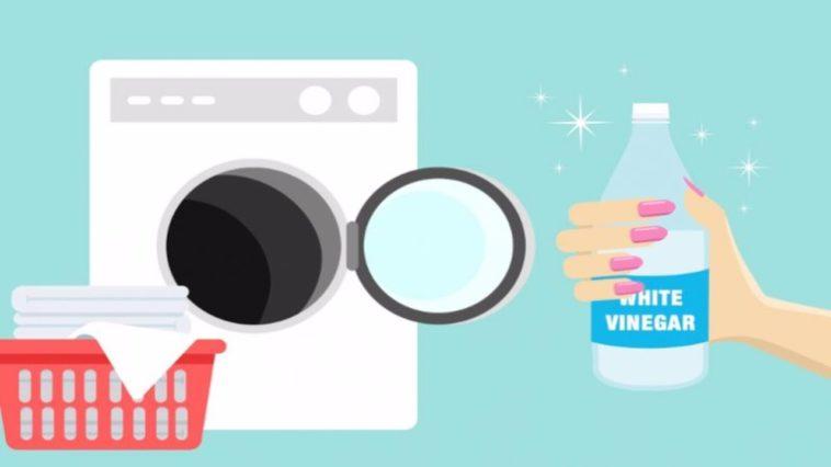 6 bonnes raisons d 39 utiliser du vinaigre blanc pour entretenir ses v tements 100 f minin - Machine a laver vinaigre blanc ...