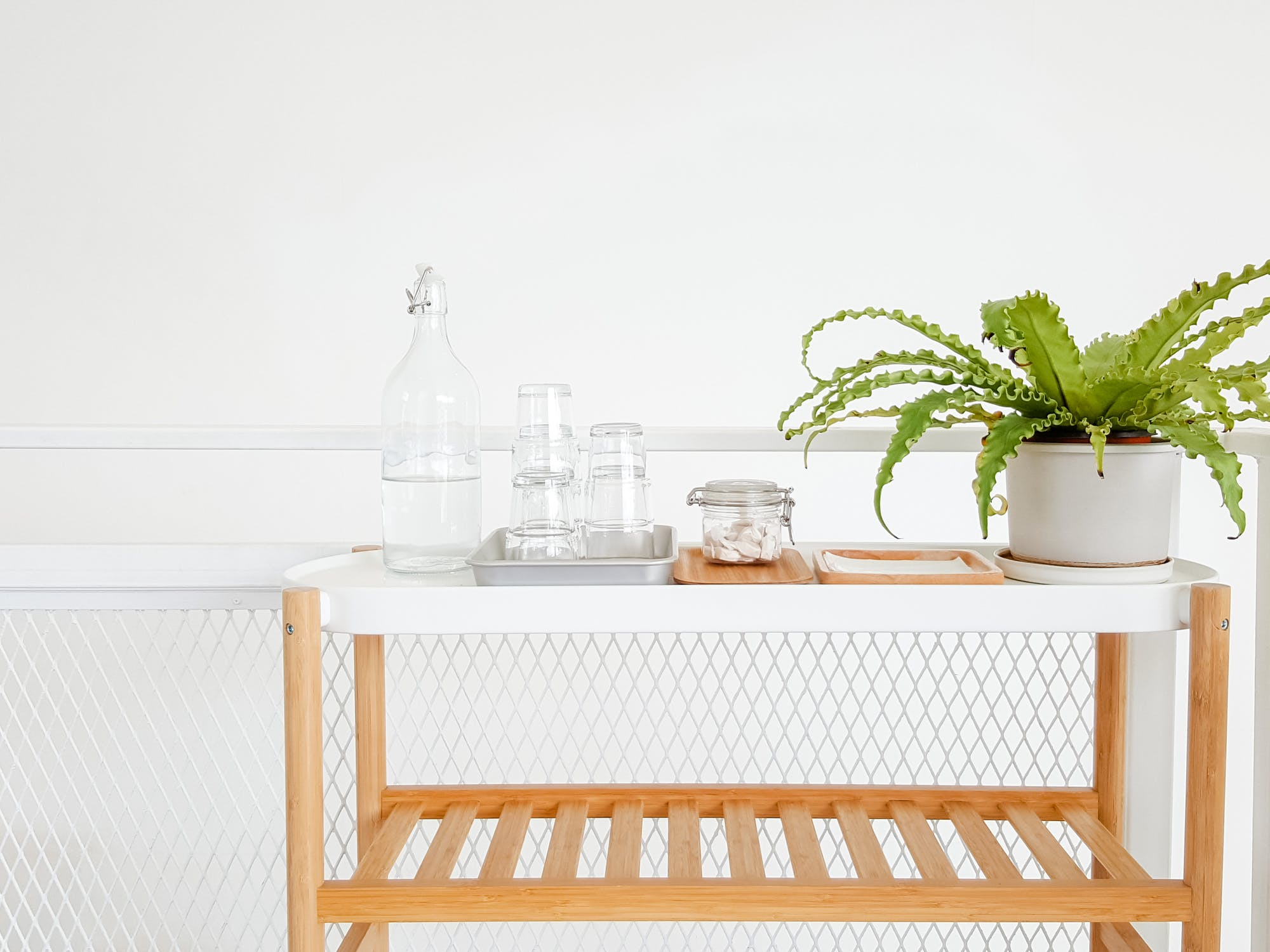 déco intérieure plantes vertes