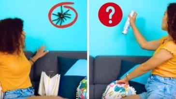 peur des araignées phobie