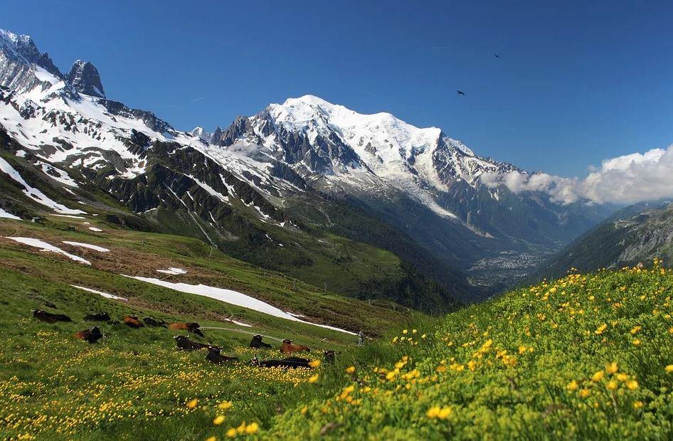 tour du mont Blanc montagne rando