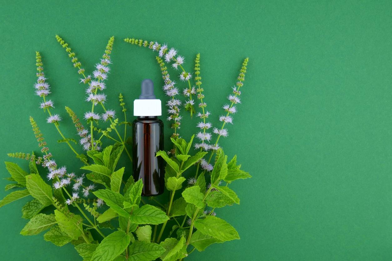 huile essentielle de menthe poivrée bienfaits hiver