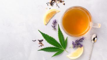 infusion de CBD cannabis plante gestion du stress